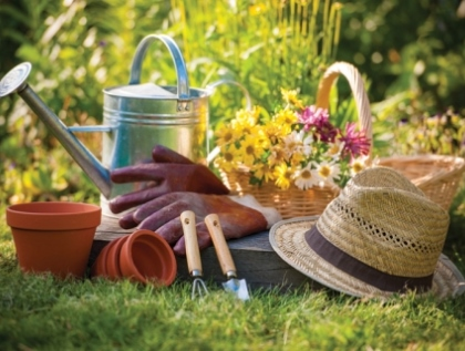 garden design myths