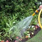 august garden chores